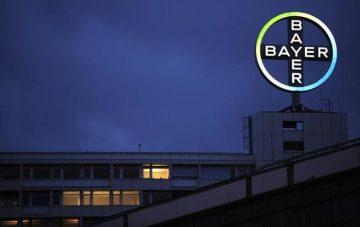 Dịch hồ sơ sản phẩm như Berocca, Canesten, Aspirin… cho Tập đoàn Bayer Healthcare